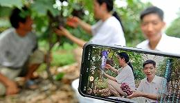 为什么外出农民工比重在下降?一个乡村视频拍摄者背后的经济学
