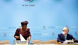 WTO预计今年全球货物贸易增长8%,美国财政刺激将令他国受益