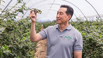 【专访】扎根云南,怡颗莓全球副总裁说中国拥有巨大的浆果消费潜力