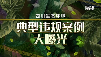 四川生态环境 典型违规案例大曝光