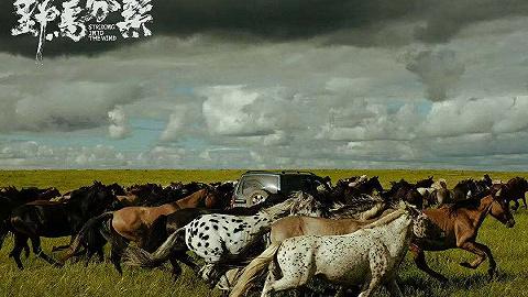 影讯 | 《野马分鬃》定档0903 《平原上的摩西》入围第69届圣塞巴斯蒂安电影节主竞赛