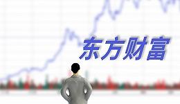 """券业市值""""一哥""""东方财富上半年净利大增106%,利润规模直追头部梯队"""