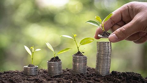 金融基础设施如何服务可持续发展和绿色金融?外滩峰会中外嘉宾这样说