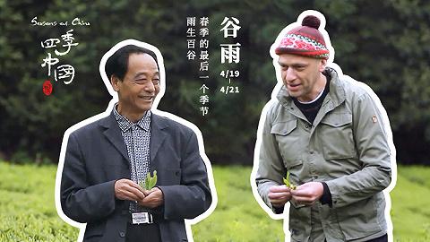英国主持人踏上茶马古道,在谷雨这一天向春天告别