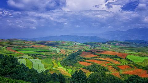 山东烟台、威海等5县市入围国家级农村产业融合发展示范园
