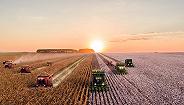 """天津唯一""""全域城市化""""涉农区2021年将实现30万农民还迁"""