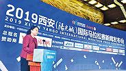 西安国际马拉松赛10月20日举办,CCTV5全程现场直播