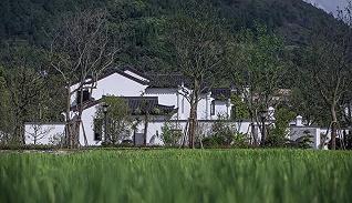 桃李人物志丨 从中原到贵州的小镇战略布局