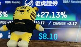 老虎证券的威风去哪了?