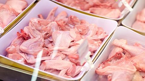 海南9月禽肉价格环比略降,双节前海口鸡肉价格稳定
