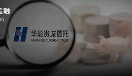 华能信托坎坷养猪路:砸出300亿不见水花,还被拖欠近200亿