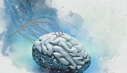 """拟用神经形态芯片,""""复制粘贴""""人脑"""