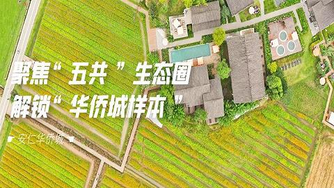 """聚焦""""五共""""生态圈 ,一起解锁""""华侨城样本"""""""